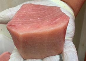 Domestic Swordfish